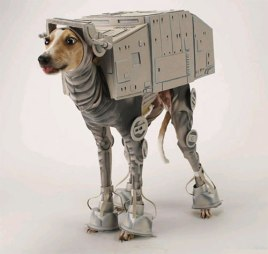 dogcostume1