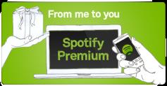 Para todos los aficionados de la música, como yo, evitar que esa mujer nos hable cada cierto tiempo interrumpiendo nuestros playlists es un suplicio. Spotify premium es la voz.